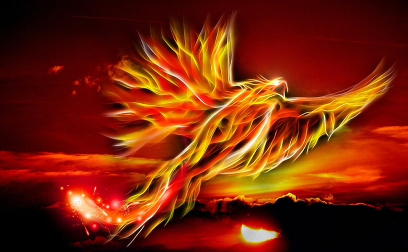 Year of the FireRooster